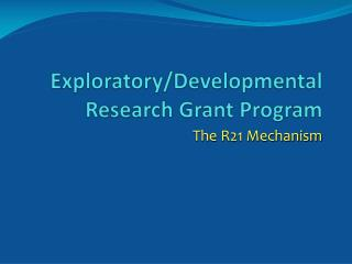 Exploratory/Developmental Research Grant Program