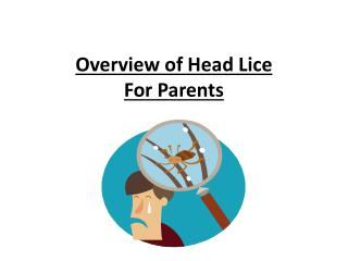 Overview of Head Lice For Parents