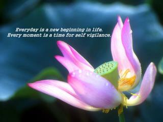Everyday is a new beginning in life.  Every moment is a time for self vigilance.