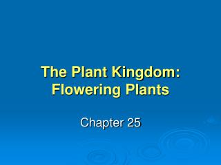 The Plant Kingdom: Flowering Plants
