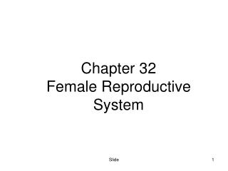 Chapter 32 Female Reproductive System