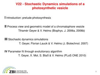 V22 - Stochastic Dynamics simulations of a  photosynthetic vesicle
