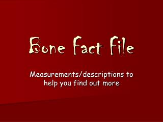 Bone Fact File