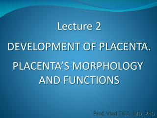 Lecture 2 DEVELOPMENT OF PLACENTA. PLACENTA'S MORPHOLOGY  AND FUNCTIONS