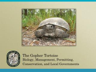 The  Gopher Tortoise  Biology, Management, Permitting, Conservation, and Local Governments