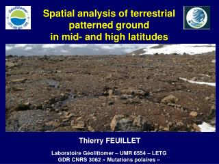 Spatial analysis of terrestrial  patterned ground  in mid- and high latitudes