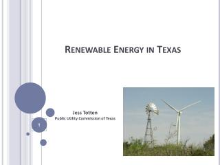 Renewable Energy in Texas