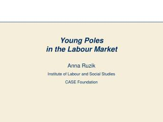 Young Poles  in the Labour Market