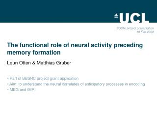 The functional role of neural activity preceding   memory formation