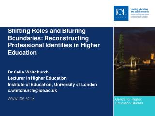 Shifting Roles and Blurring Boundaries: Reconstructing Professional Identities in Higher Education