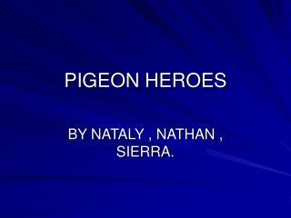 PIGEON HEROES