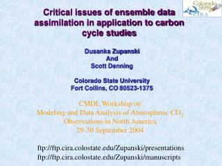 Critical issues of ensemble data assimilation in application to carbon cycle studies
