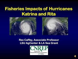 Fisheries Impacts of Hurricanes Katrina and Rita