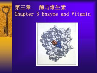 第三章   酶与维生素 Chapter 3 Enzyme and Vitamin