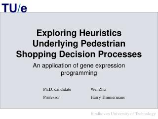 Exploring Heuristics Underlying Pedestrian Shopping Decision Processes