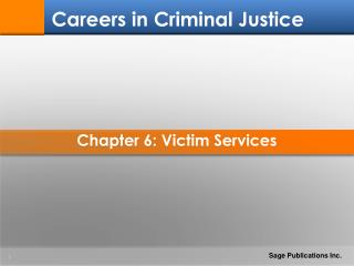 Chapter 6: Victim Services