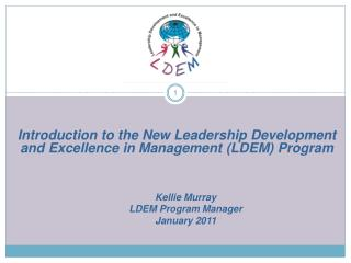 Introduction to the New Leadership Development and Excellence in Management (LDEM) Program