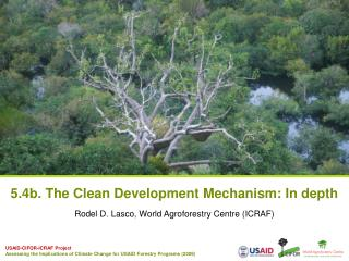 5.4b. The Clean Development Mechanism: In depth
