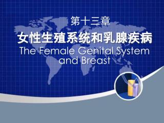 女性生殖系统和乳腺疾病  The Female Genital System and Breast