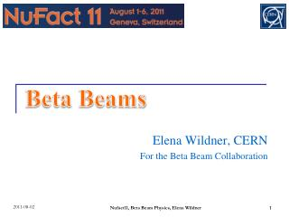 Elena Wildner, CERN For the Beta Beam Collaboration