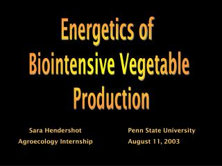 Energetics of  Biointensive Vegetable  Production