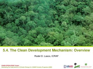 5.4. The Clean Development Mechanism: Overview