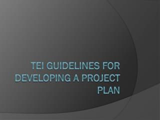 TEI Guidelines for Developing a Project Plan