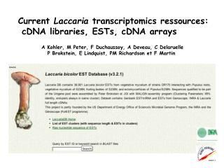 Current  Laccaria  transcriptomics ressources:  cDNA libraries, ESTs, cDNA arrays