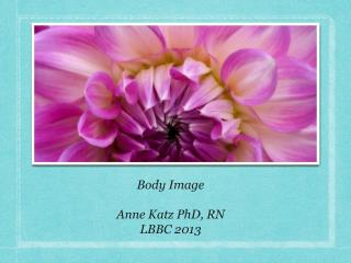 Body Image Anne Katz PhD, RN LBBC 2013