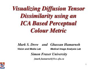 Visualizing Diffusion Tensor Dissimilarity using an  ICA Based Perceptual  Colour Metric