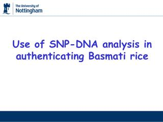 Use of SNP-DNA analysis in authenticating Basmati rice