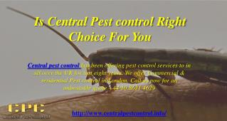 Is Central Pest control Right Choice For You