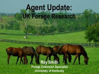 Agent Update: UK Forage Research