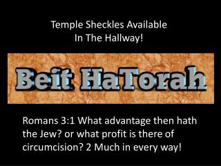 Temple Sheckles Available In The Hallway!