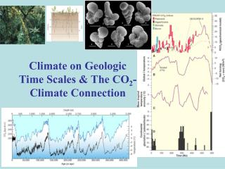 Climate on Geologic Time Scales & The CO 2 -Climate Connection