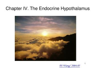 Chapter  Ⅳ . The Endocrine Hypothalamus