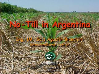 No-Till in Argentina