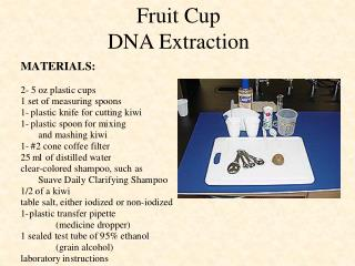 Fruit Cup DNA Extraction