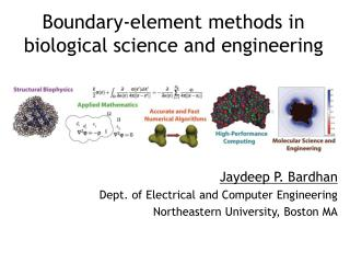 Boundary-element methods in biological science and engineering