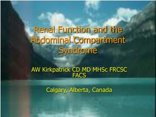 Renal Function and the Abdominal Compartment Syndrome