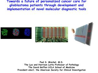 Paul S. Mischel, M.D. The Lya and Harrison Latta Professor of Pathology