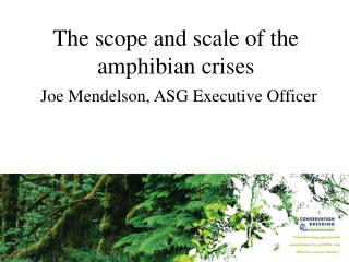 The scope and scale of the   amphibian crises Joe Mendelson, ASG Executive Officer