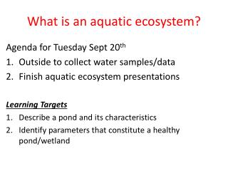 What is an aquatic ecosystem?