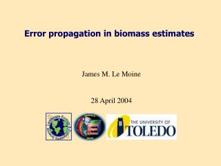 Error propagation in biomass estimates
