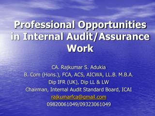 Professional Opportunities in Internal Audit/Assurance Work
