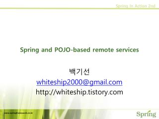 Spring and POJO-based remote services