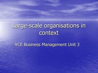 Large-scale organisations in context
