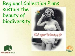 Regional Collection Plans sustain the  beauty of biodiversity.
