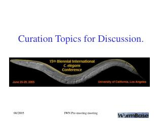 Curation Topics for Discussion.