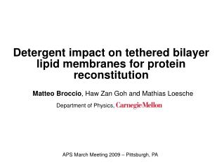 Detergent impact on tethered bilayer lipid membranes for protein reconstitution
